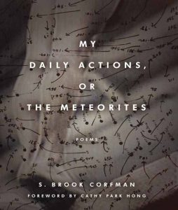 My Daily Actions, or The Meteorites
