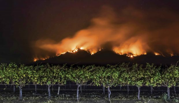 A wildfire burns along a ridge line above a Santa Rosa vineyard